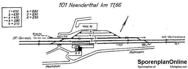 101_Neanderthal