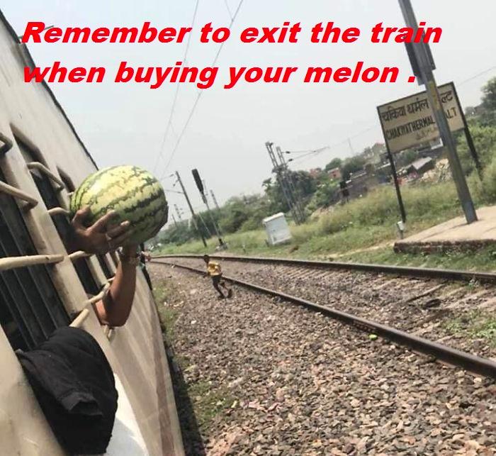 1 - melon